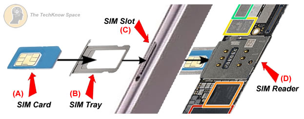 How a SIM card goes into an iPhone